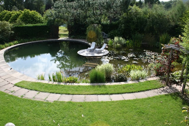 Pases home for Koi pond natural swimming pool
